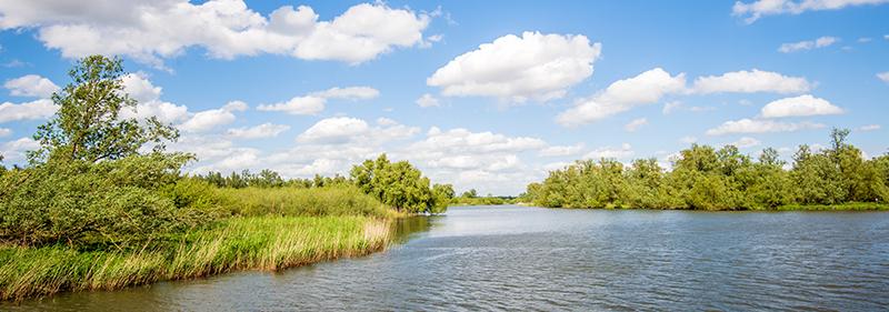 Varen door Nationaal Park de Biesbosch